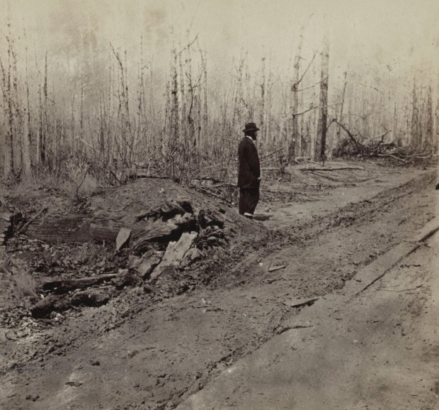 Wilderness plank road4 (1)
